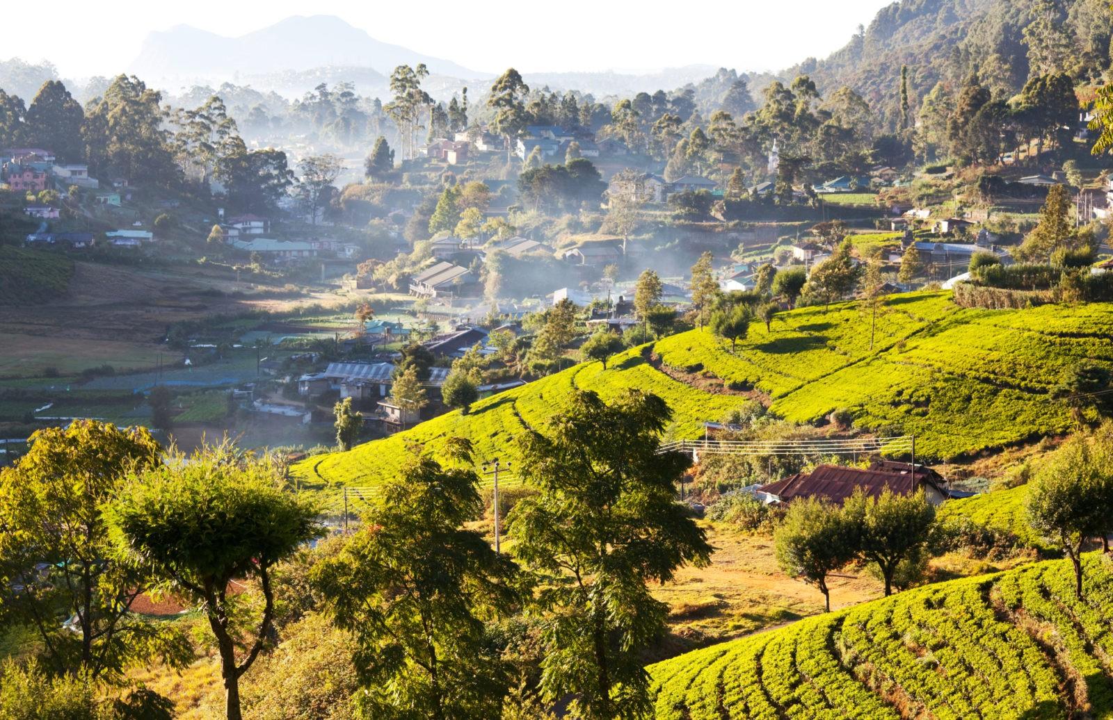 Виза на Шри-Ланку станет снова платной